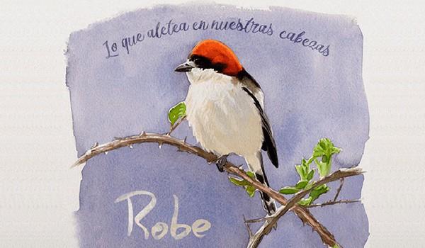 El primer disco en solitario de Robe Iniesta no nos convence